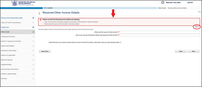 Screenshot of Apply Online - Errors on page example